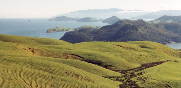 Coromandel Peninsula, Auckland Motorhome Rental, NZ RV Rentals & Campervan Hire, New Zealand
