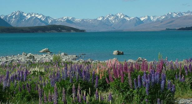Christchurch motorhome rental nz rv rentals campervan hire Lake tekapo motor camp