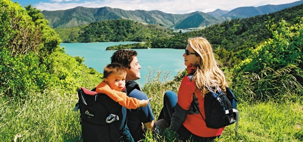 Marlborough Sounds from Queen Charlotte Track; New Zealand scenic drives