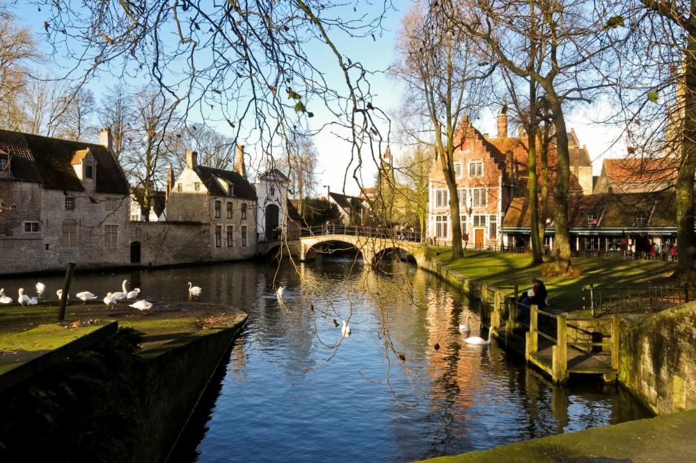 比利时房车租赁, 白天鹅, 布鲁日